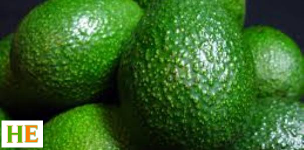 Health Benefits of avocado, fpr men, for kids, seeds, leaves, weight loss, pear