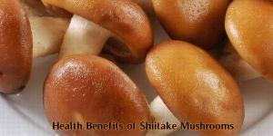 Top Health Benefits Shiitake Mushrooms