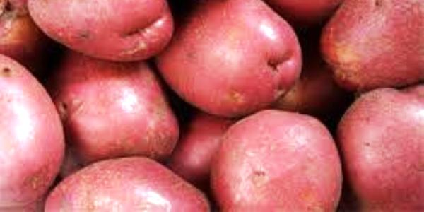 Health Benefits of Red Potatoes