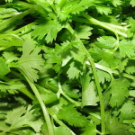 Cilantro Helath Benefits